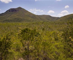 Kutini-Payamu Iron Range National Park CYPAL - Accommodation Ballina
