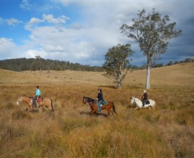 Chapman Valley Horse Riding - Accommodation Ballina