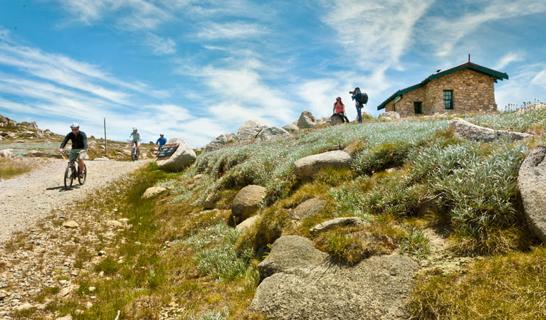Mount Kosciuszko Summit walk - Accommodation Ballina