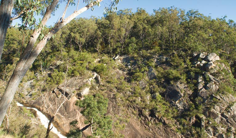 Boonoo Boonoo National Park - Accommodation Ballina
