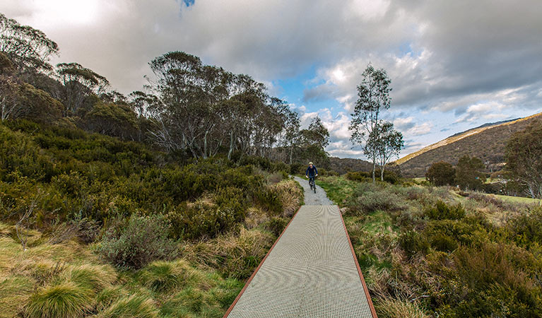 Thredbo Valley track - Accommodation Ballina