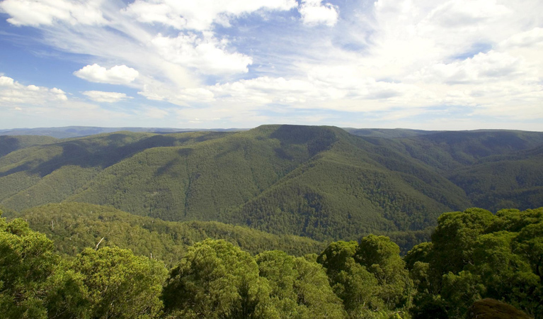 Barrington Tops National Park - Accommodation Ballina
