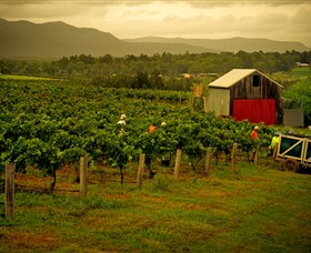 Around Hermitage Wine and Food Trail Hunter Valley - Accommodation Ballina