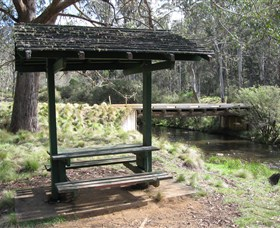 Barrington Tops State Forest - Accommodation Ballina