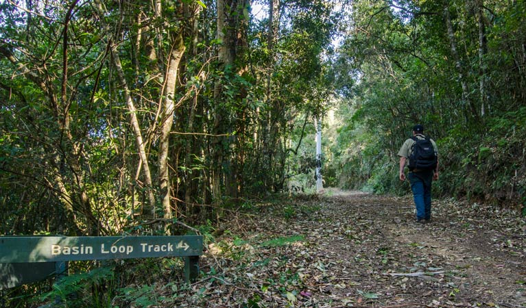 Basin Loop track - Accommodation Ballina