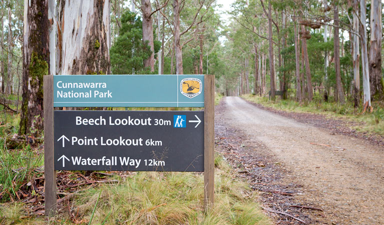 Beech lookout - Accommodation Ballina