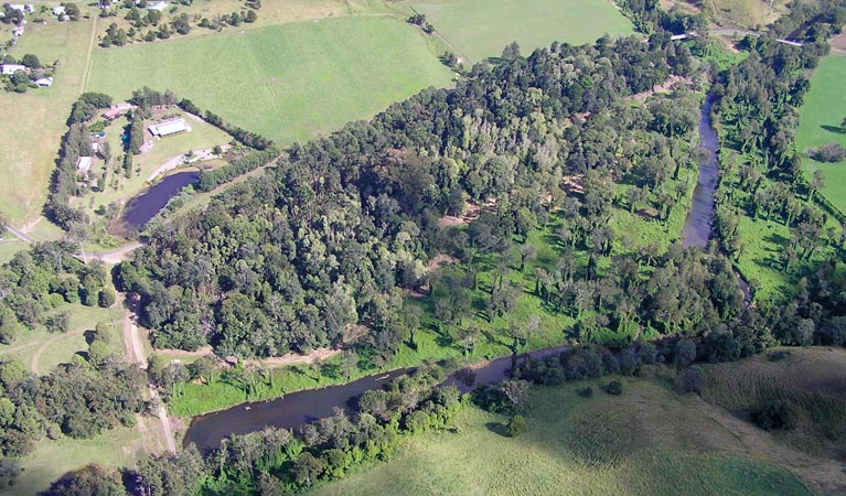 Moore Park Nature Reserve - Accommodation Ballina