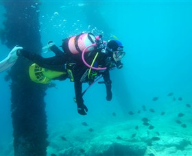 Shellharbour Scuba  Photography Centre - Accommodation Ballina