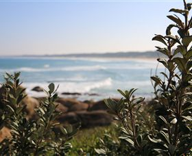 Cape Conran Coastal Park - Accommodation Ballina