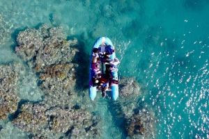Glass-bottom boat tour with Whitehaven Beach - Accommodation Ballina