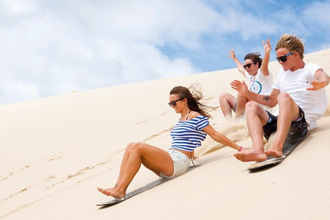 Port Stephens Day Tour with Dolphin Watching Sandboarding  Australian Wildlife