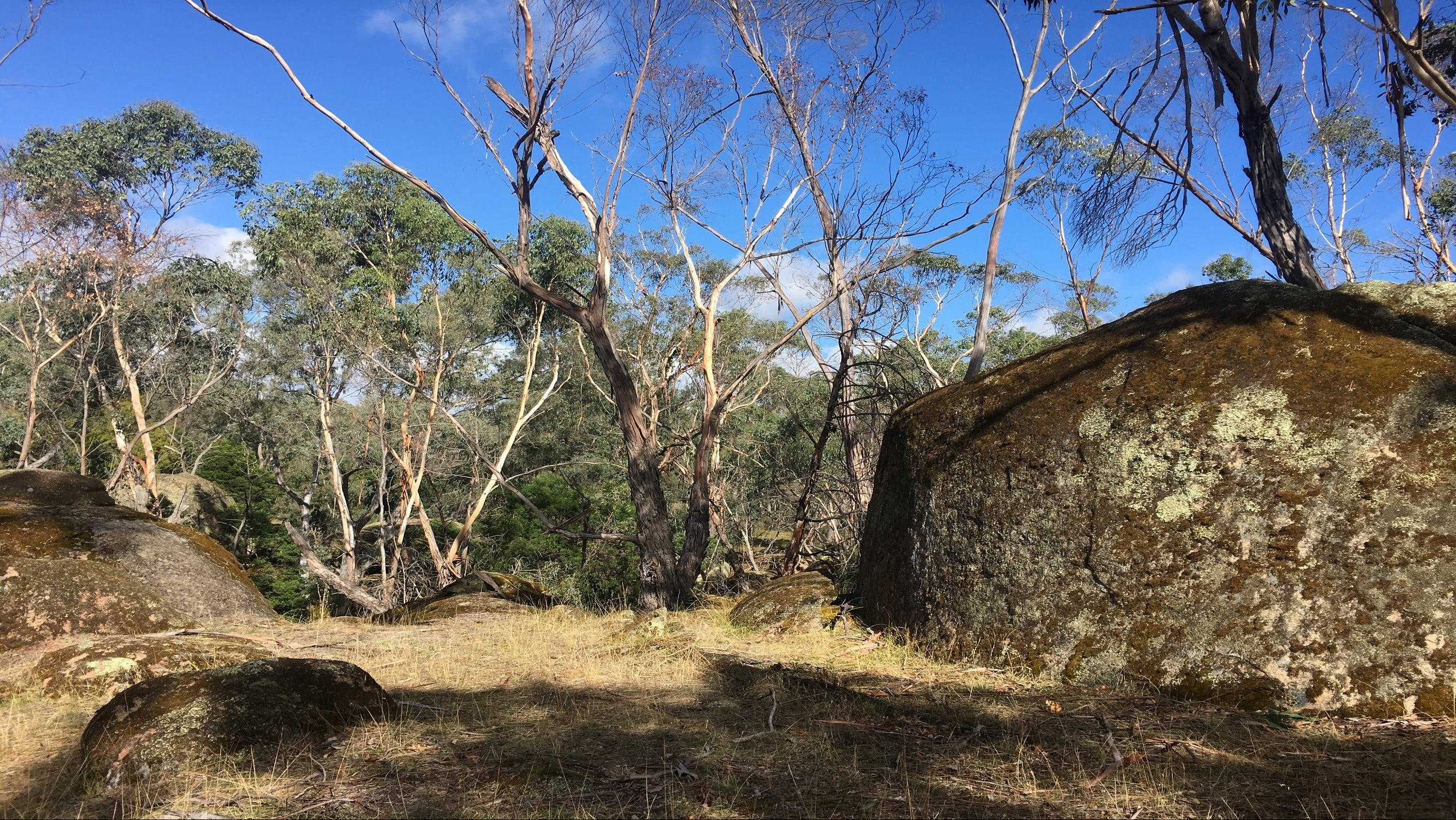 Bailey's Rocks - Dergholm State Park - Accommodation Ballina