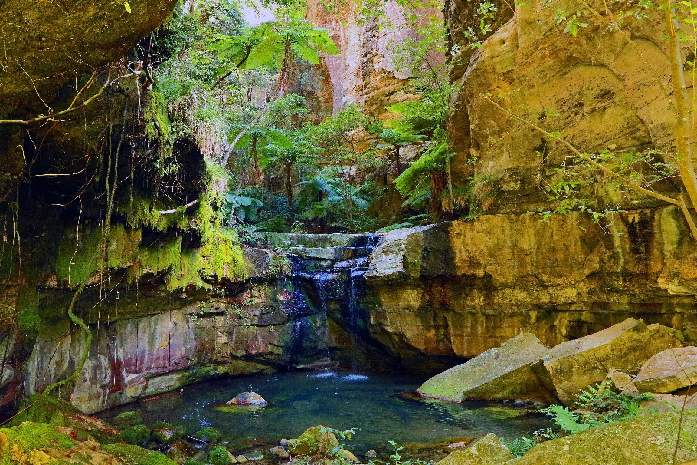 Glimpse of the Outback 5 Day Tour - Roma and Surrounds - Accommodation Ballina