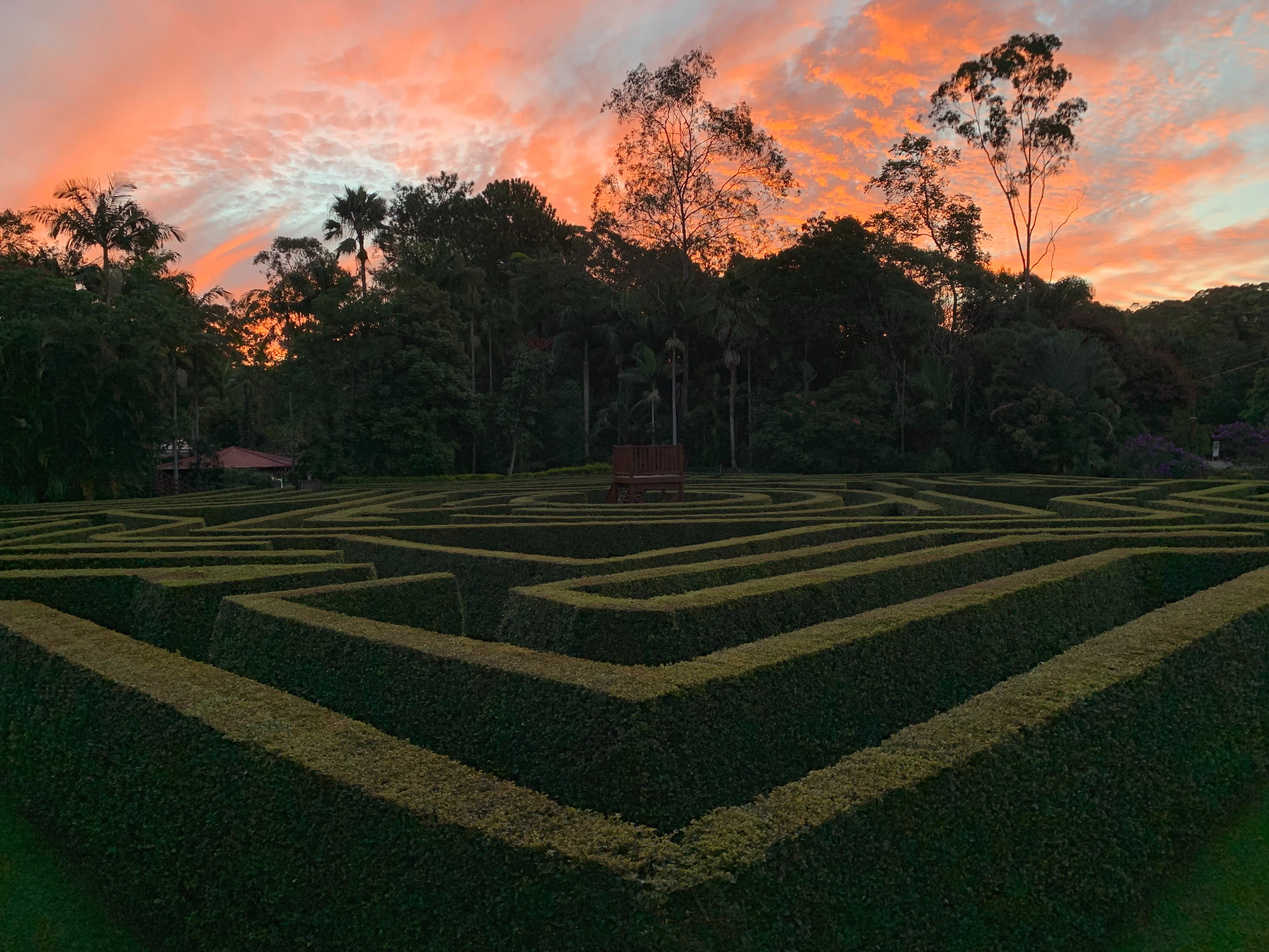 Bellingham Maze - Accommodation Ballina