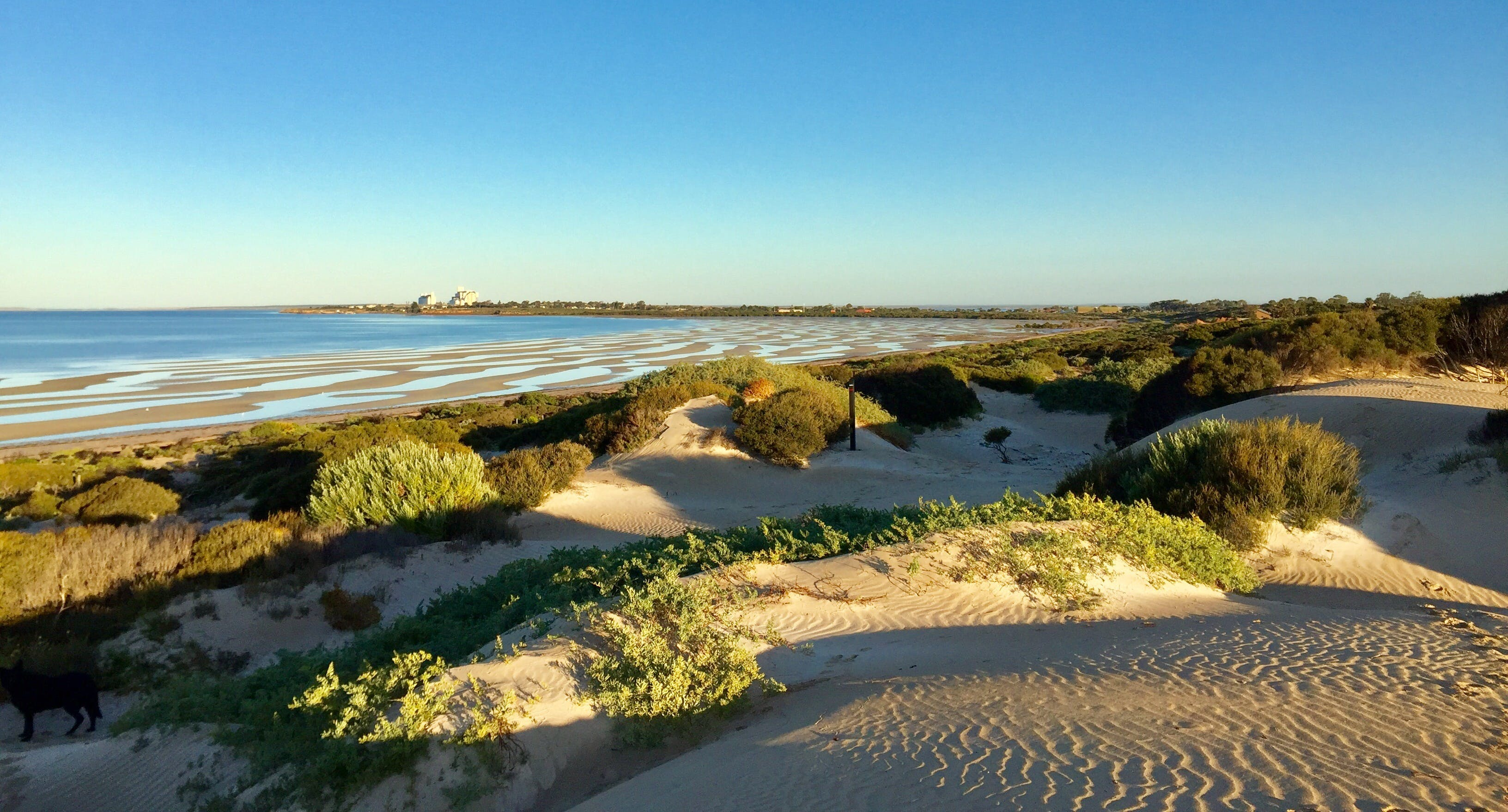 Shelly Beach Dune Walk Trail - Accommodation Ballina