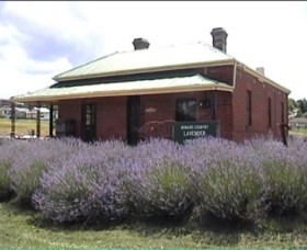 Lavender House in Railway Park - Accommodation Ballina