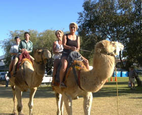 Calamunnda Camel Farm - Accommodation Ballina