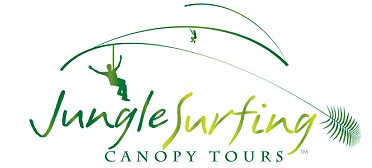 Jungle Surfing Canopy Tours and Jungle Adventures Nightwalks - Accommodation Ballina