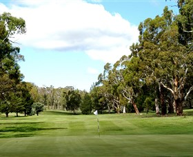 Cooma Golf Club - Accommodation Ballina