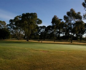 Winchelsea Golf Club - Accommodation Ballina