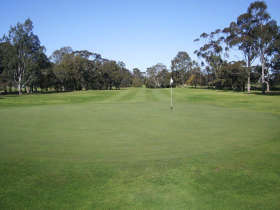 Maffra Golf Club - Accommodation Ballina