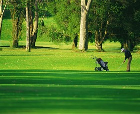 Foster Golf Club - Accommodation Ballina