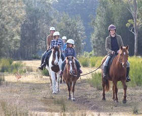 Horse Riding at Oaks Ranch and Country Club - Accommodation Ballina