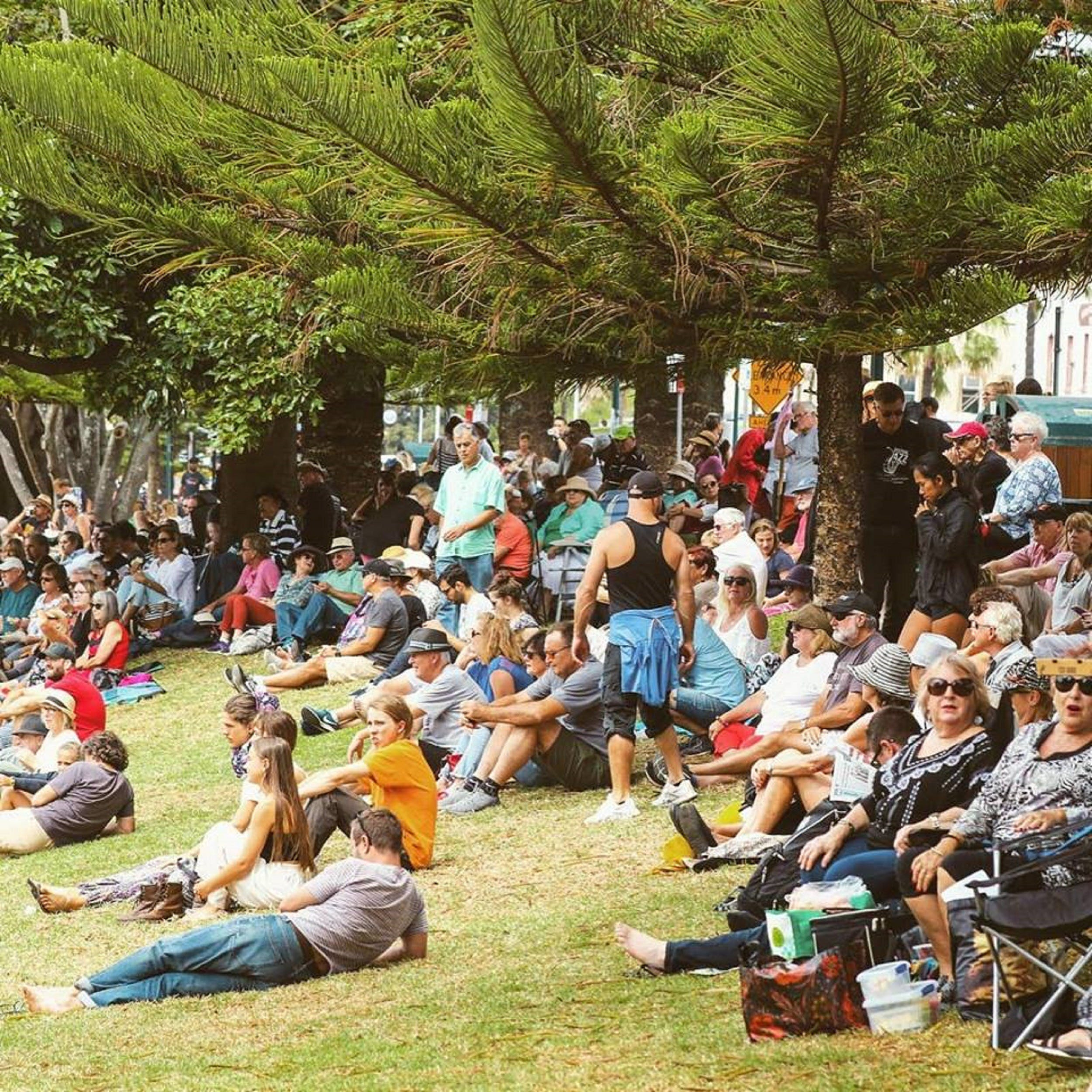 Music in the Park - Accommodation Ballina