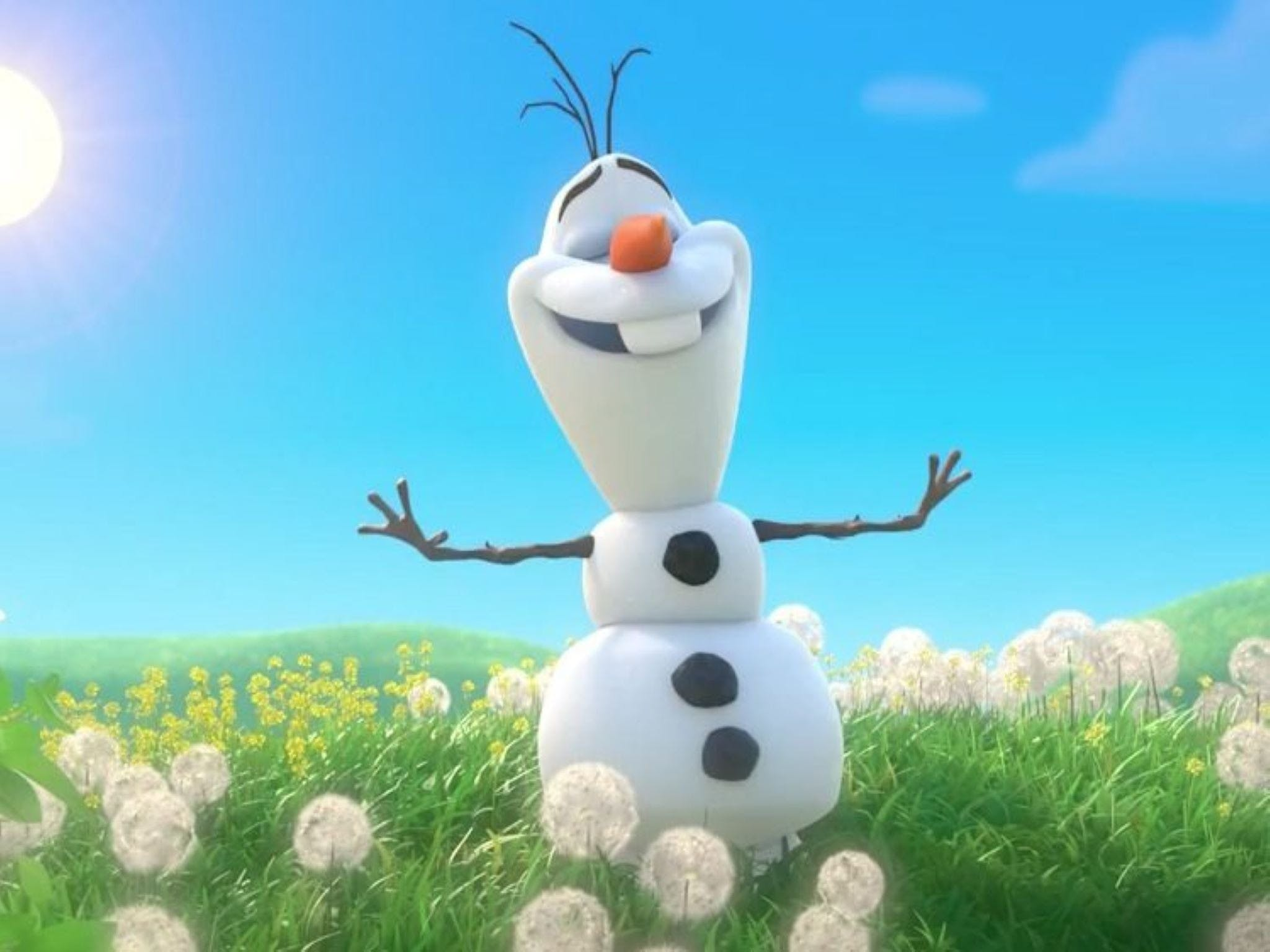 Meet Olaf from Frozen - Accommodation Ballina