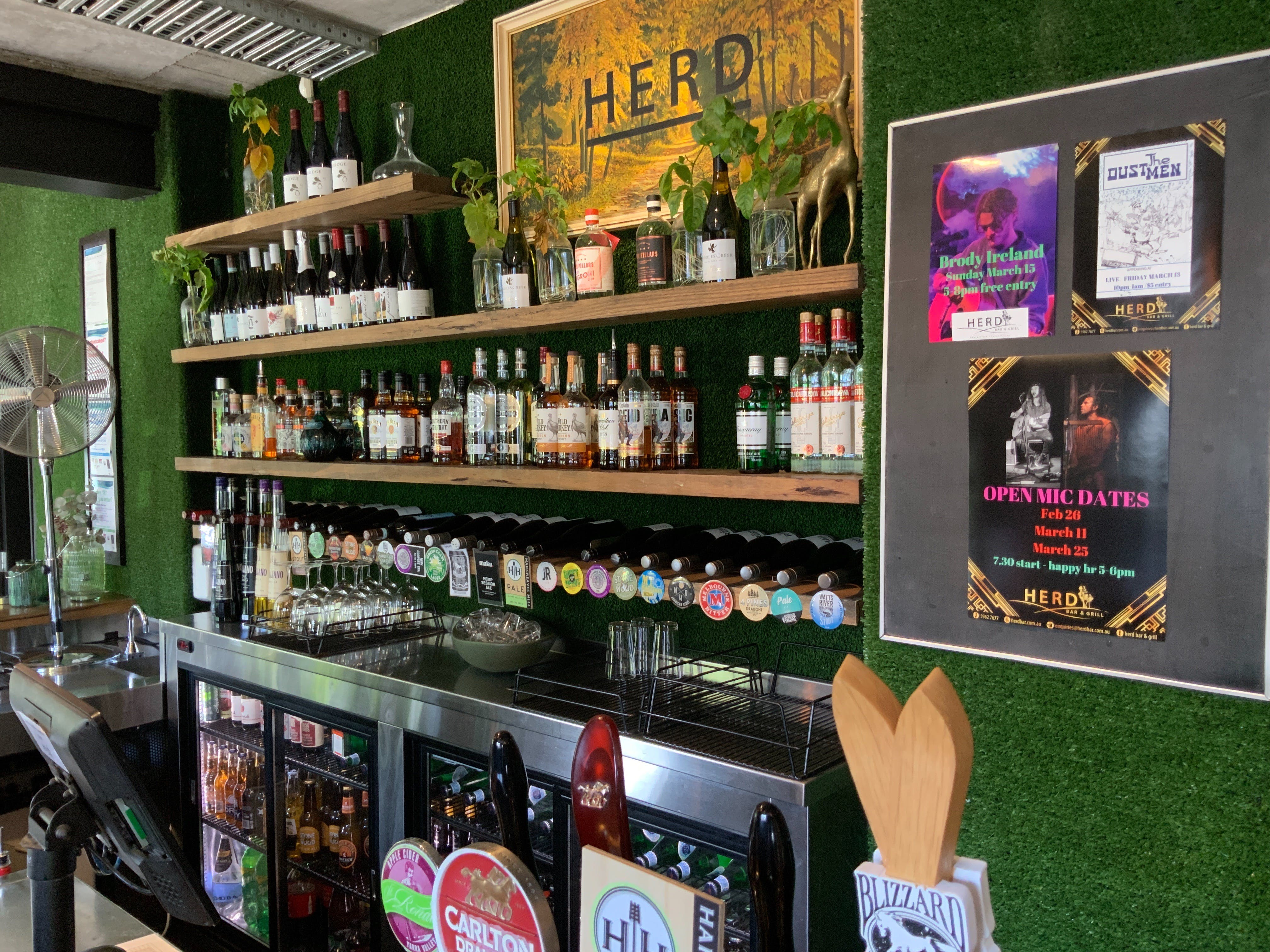 Open Mic at Herd Bar and Grill - Accommodation Ballina