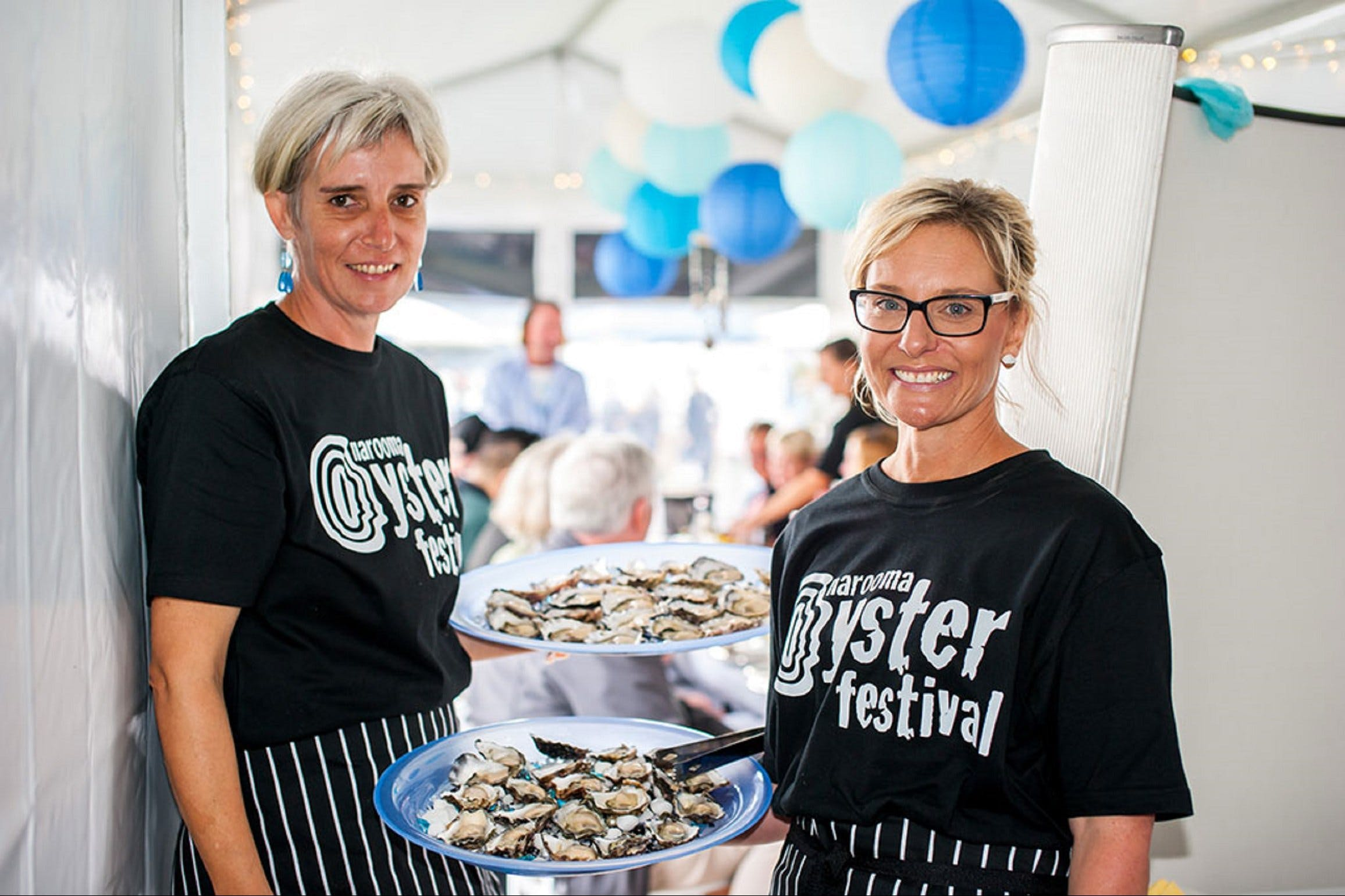 Narooma Oyster Festival - Accommodation Ballina