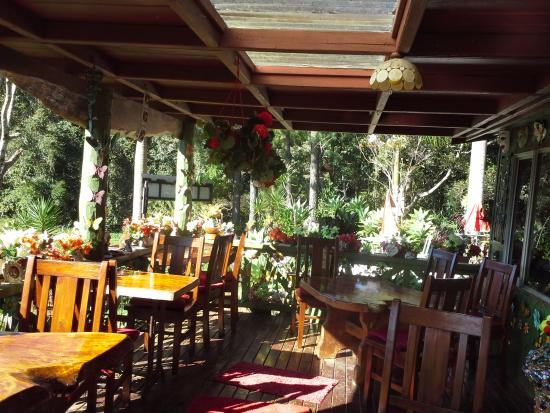 Suzannes's Hideaway Cafe - Accommodation Ballina