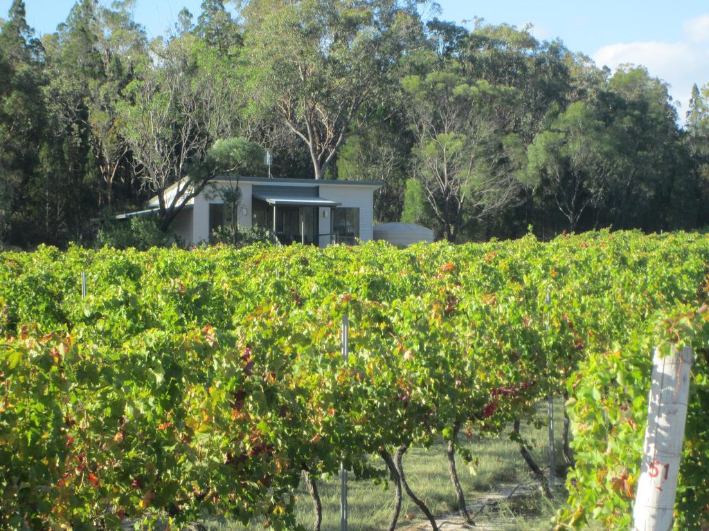 Just Red Wines Cabins - Accommodation Ballina