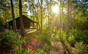 Kianinny Bush Cottages - Accommodation Ballina