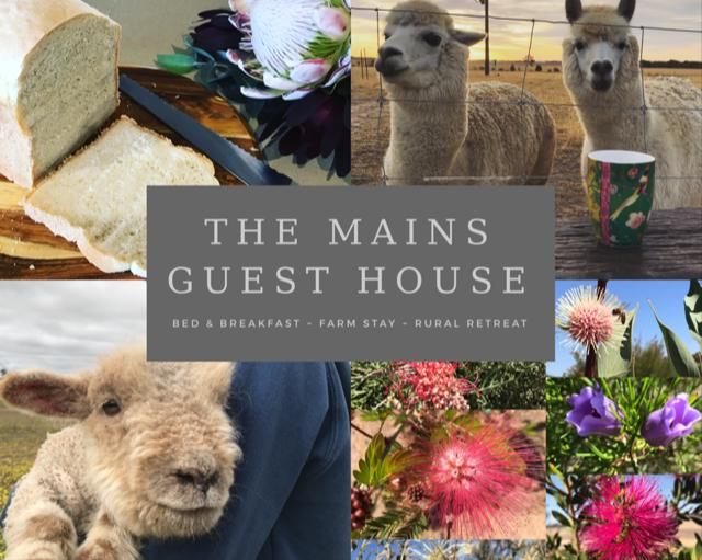 The Mains Guest House - Accommodation Ballina