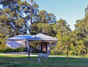 Araluen Park Cottages - Accommodation Ballina